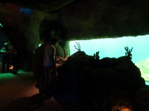 Undersea viewing gallery