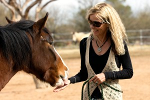 "Karen Pomroy, of Equine Voices, greets Blaze. Blaze is a ""wild"" Sahuarita horse who now lives at Jumpin' Jack Ranch. Photograph by Susan E. Swanberg"